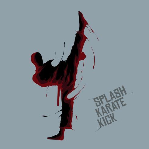 splash karate kick