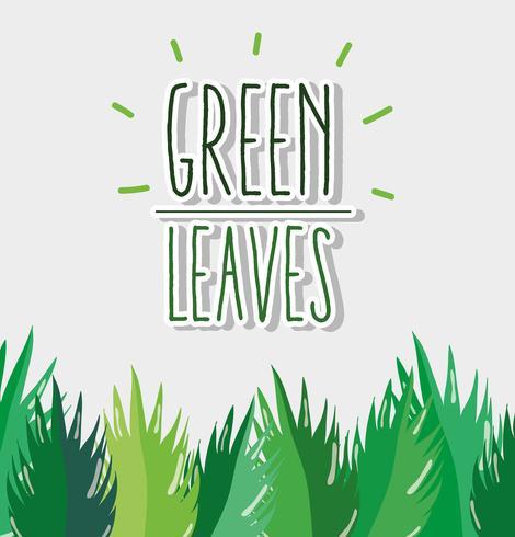 Marco de hojas verdes