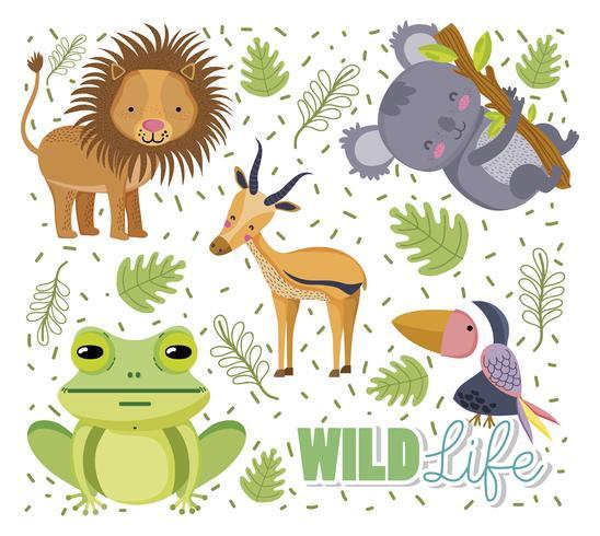 Conjunto de animais selvagens