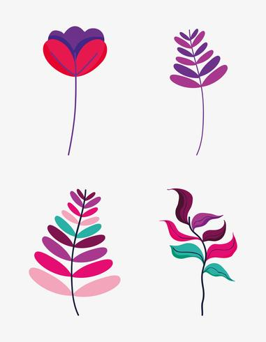 Set di fiori