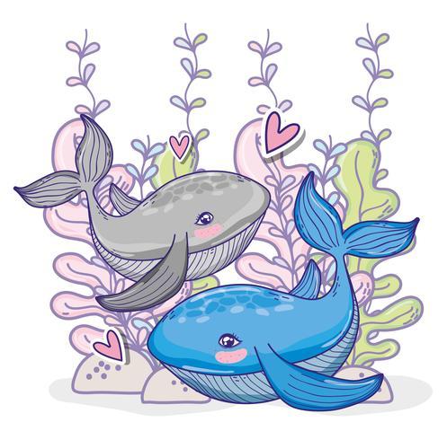Walvissen onderzeese dieren cartoon