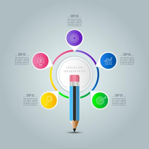 Education infographics template 5 step option. vector