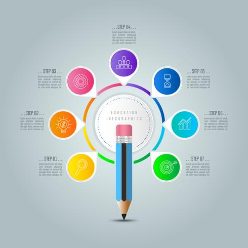 Bildung Infografiken Vorlage 7-Schritt-Option.