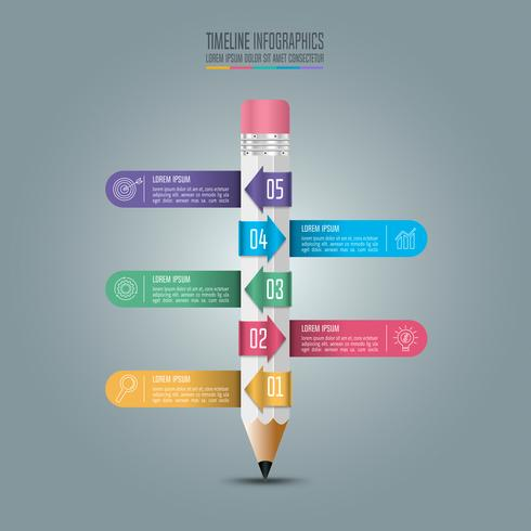 Education infographics template 5 step option.