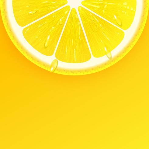 Gesneden verse citroen achtergrond Vector