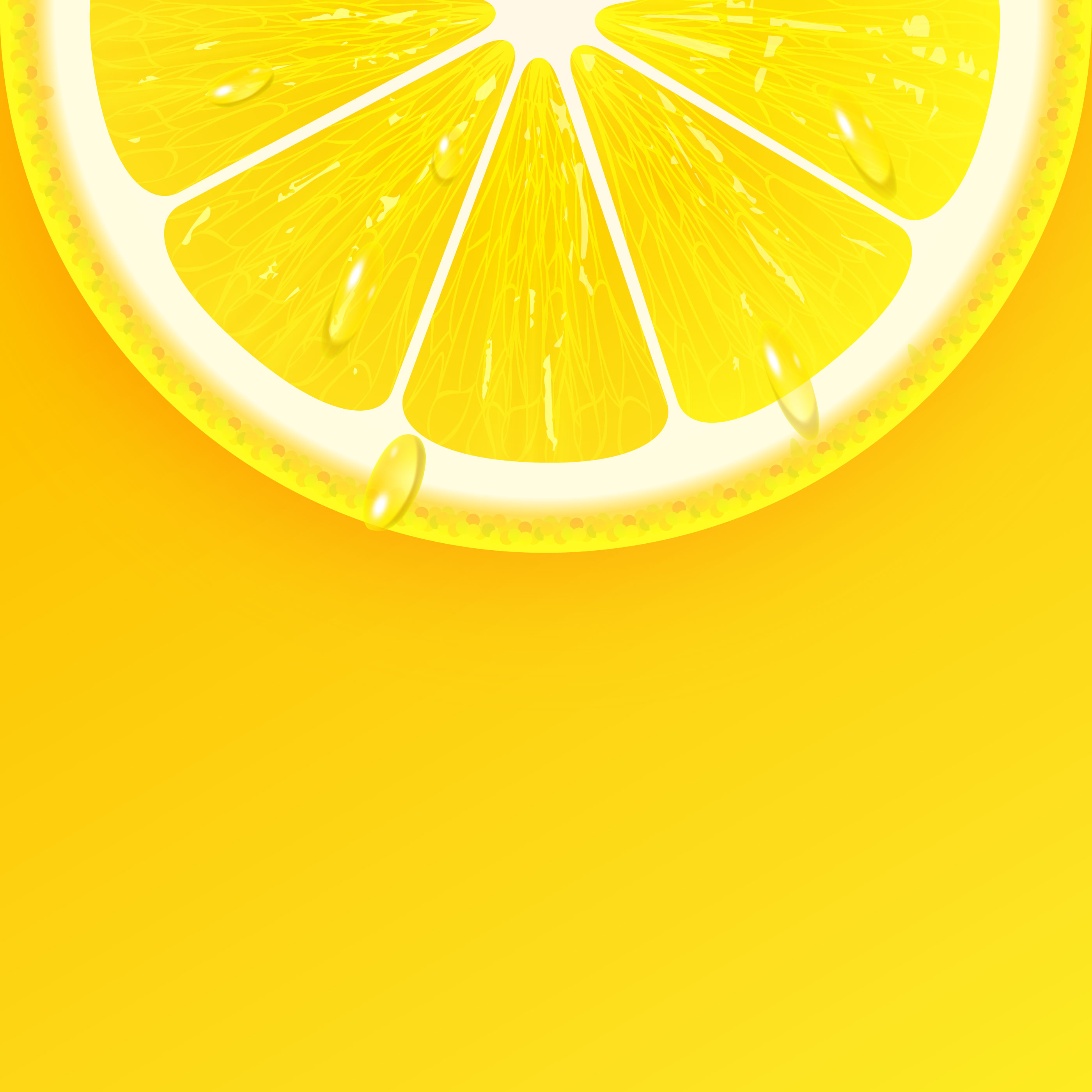 half lemon free vector art 148 free downloads half lemon free vector art 148 free