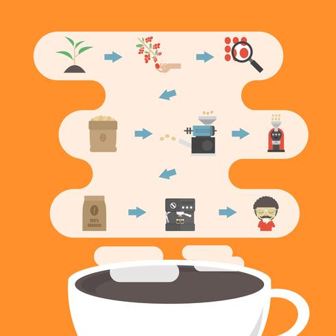 koffieproces infographic vector