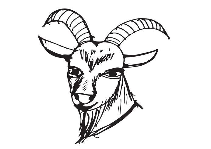ilustración de dibujos animados de cabra