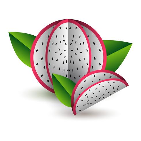 Vector tropical summer exotic fruit paper cut volumetric. Origami. Isolated color object on white background. Dragon fruit pitahaya and lobule