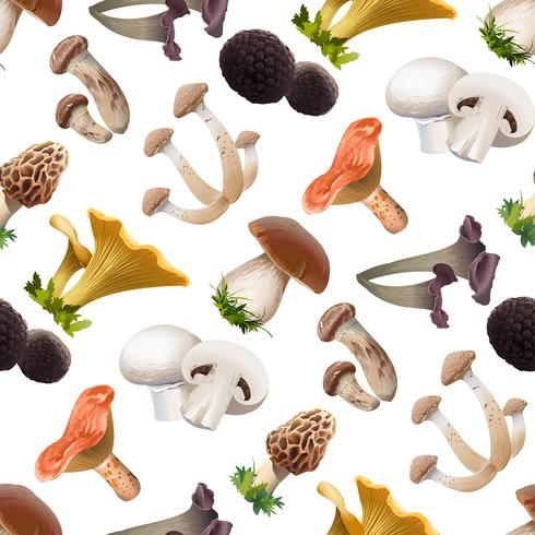Naadloos patroon van diverse soorten eetbare paddestoelen