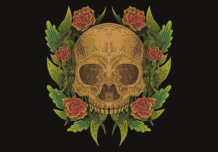 skull decoration vector illustration