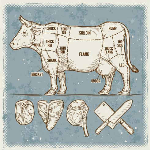 Vector illustration set cuttings of beef.