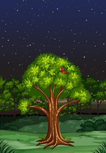 Naturscen på natten