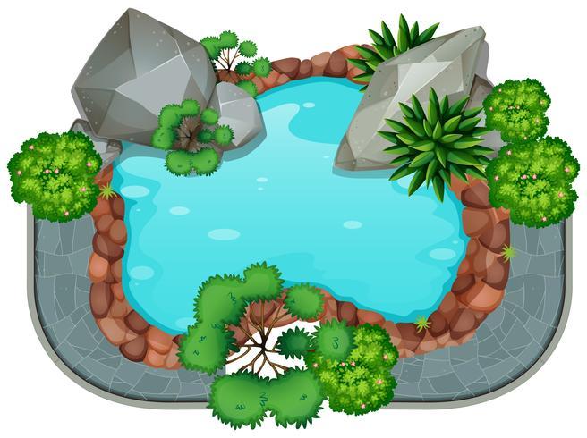 Um isolado da lagoa