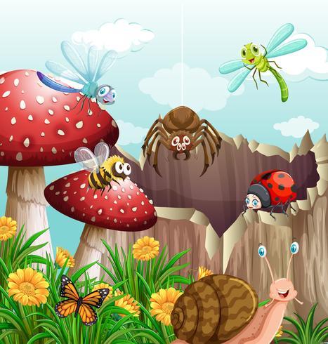Olika typer av insekter i trädgården