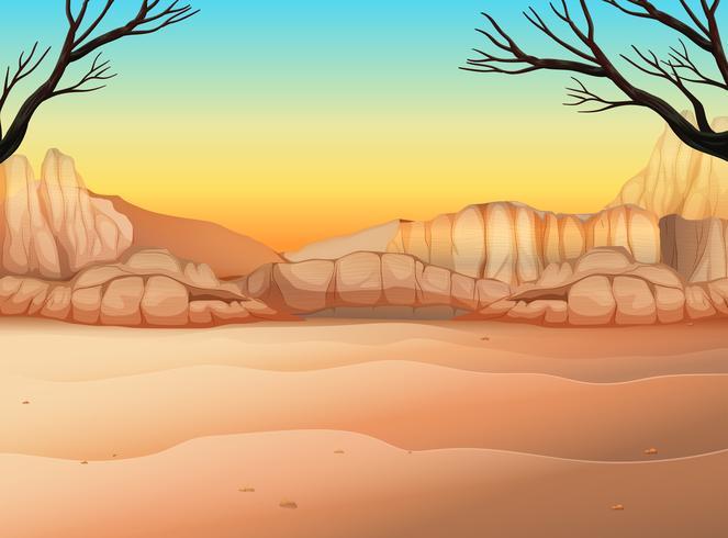Aardscène met veld en canyon