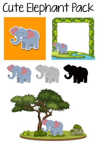 A Cute elephant pack