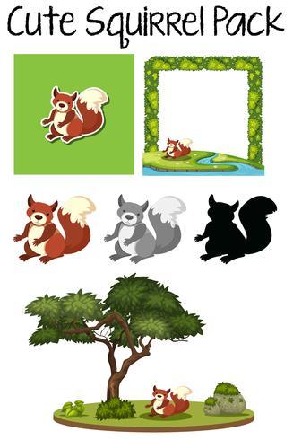 Um pacote de esquilo