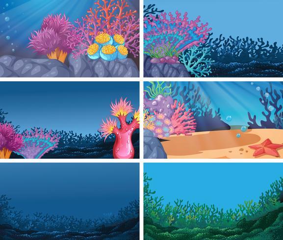 Uppsättning av undervattensbakgrund