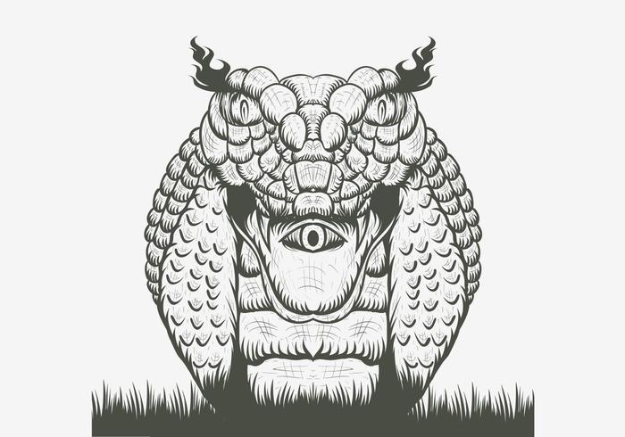 snake cobra vector illustration