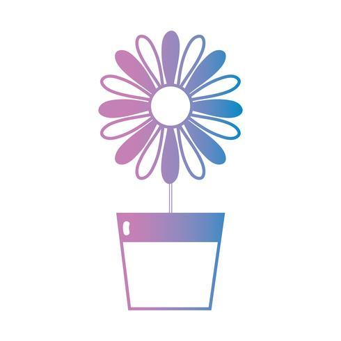 linha flor natural com pétalas dentro do vaso