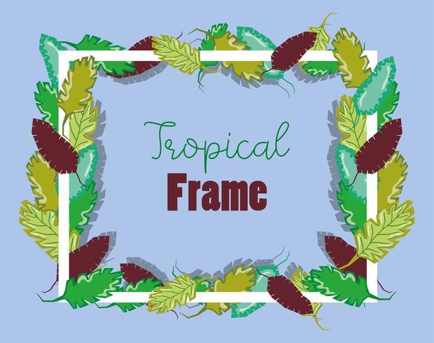 Cornice quadrata tropicale