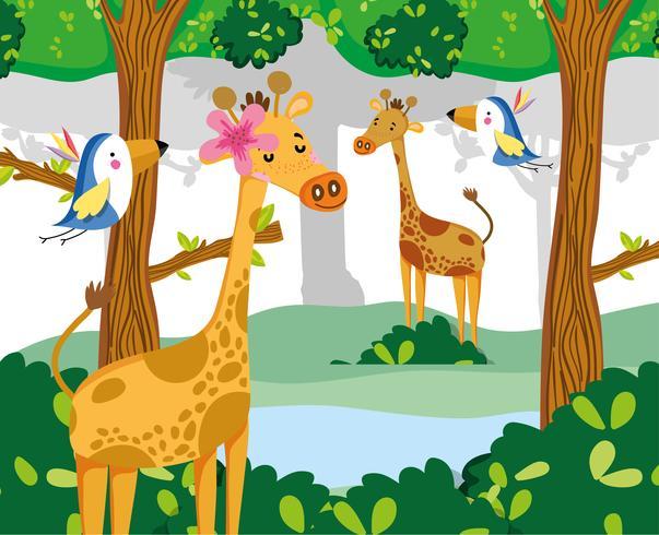 Simpatici animali della fauna selvatica