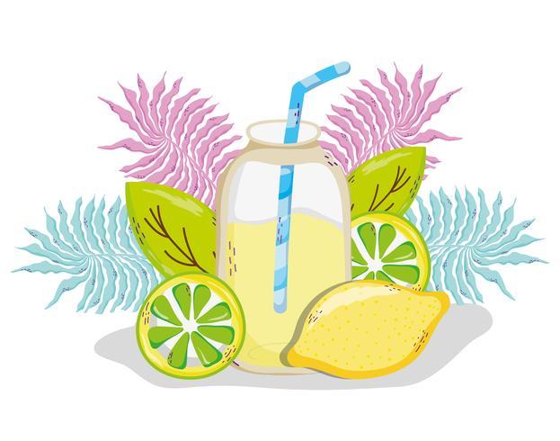 Dibujos animados de jugo de verano delicioso
