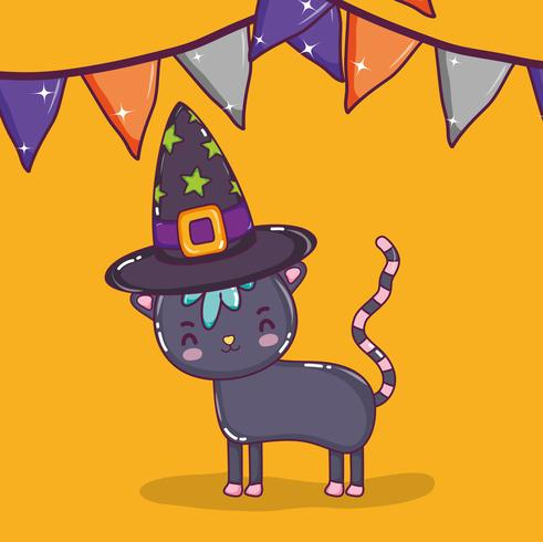 Halloween cat cartoons