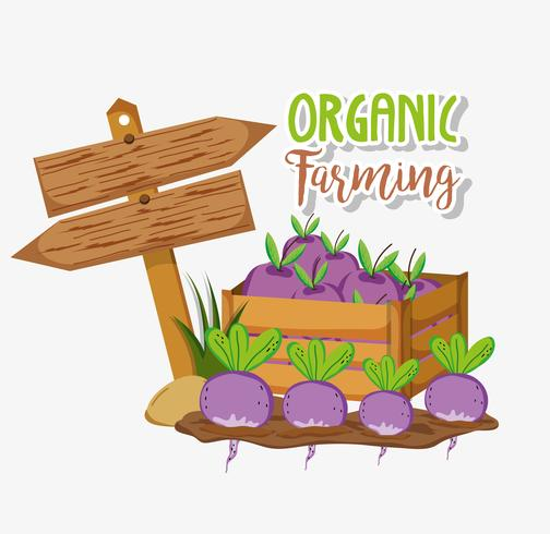 Biologische landbouw tekenfilms