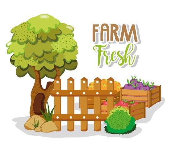 Productos frescos de granja vector