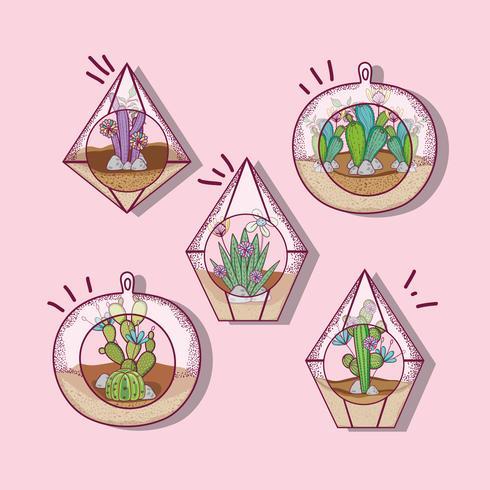 Pianta all'interno del vetro poliedro