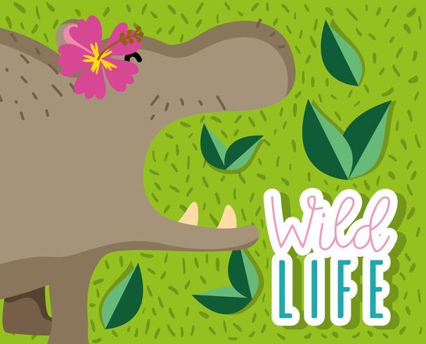 Dibujos animados lindo elefante vector