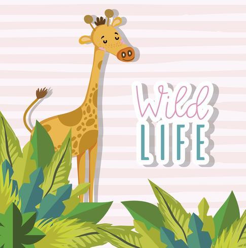 Cartoni animati di animali selvatici