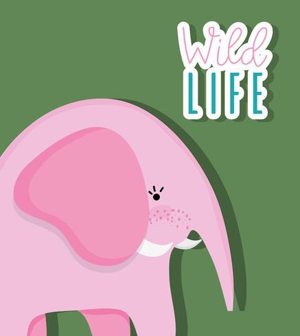 Niedlicher Elefant der wild lebenden Tiere
