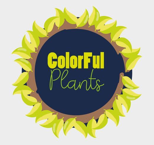 Progettazione di piante colorate