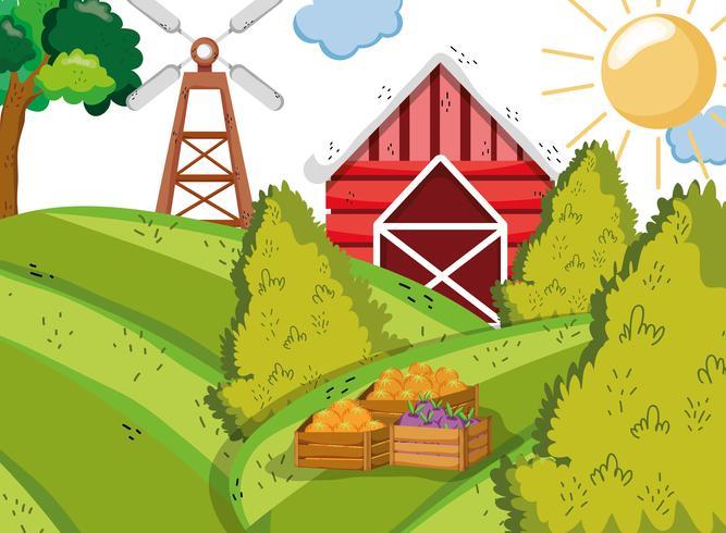 Dibujos animados lindos de la granja