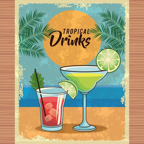 cartel de cóctel tropical vector