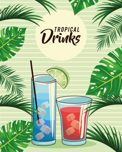 tropical cocktail drinks poster vector