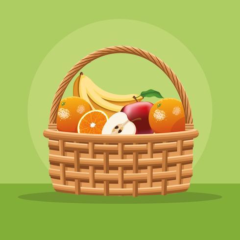 Frutas y verduras en cesta. vector