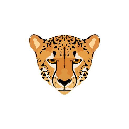 Illustration vectorielle d'une tête de guépard. vecteur