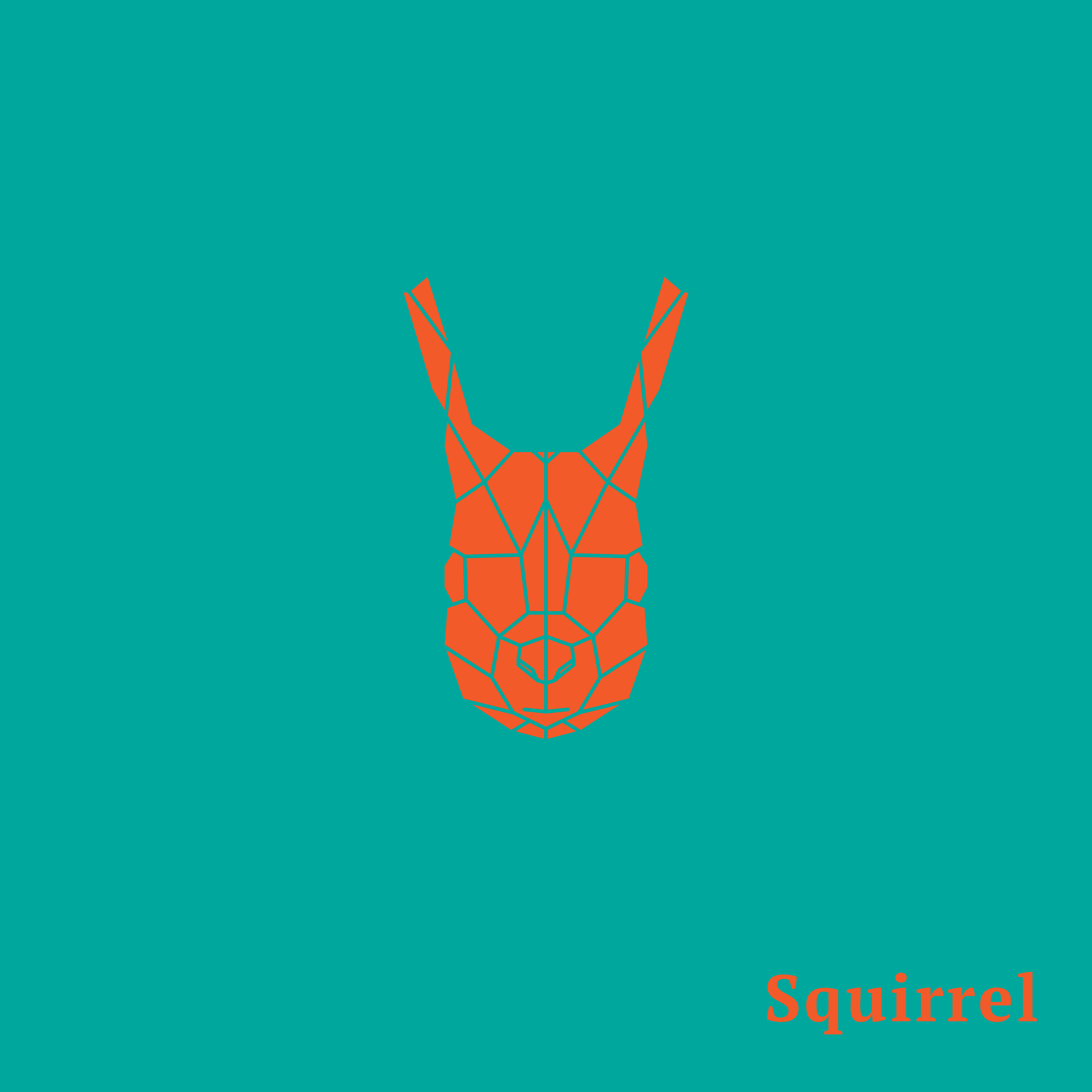 Wild Animal Or Zoo Animal Group With Nature Elements On White Background: Geometric Orange Head Squirrel.