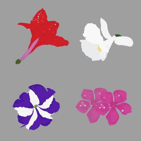 Realistische Vektor-Illustration schöner Wiled-Blume
