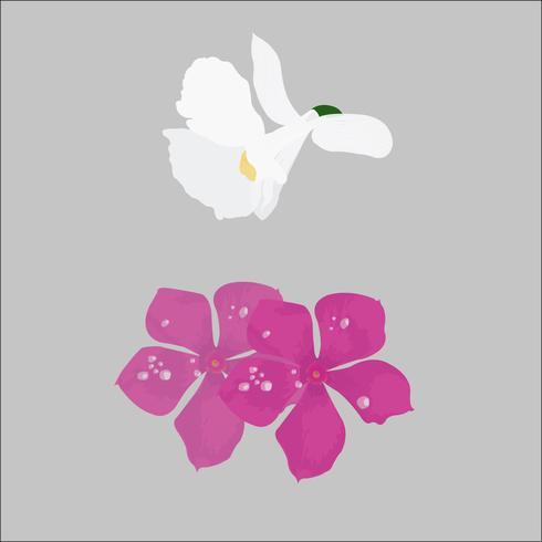 Illustration vectorielle de belle fleur Wiled Realstic