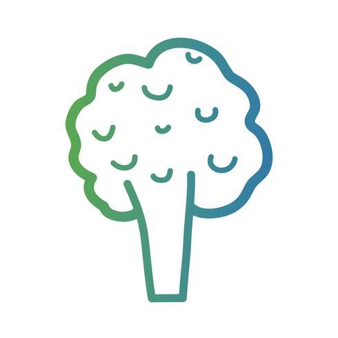 linha saudável brócolis legumes comida vetor