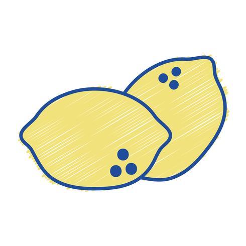 rallados deliciosos limones alimentos de fruta orgánica vector
