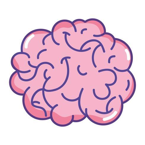 Anatomía del cerebro humano a creativo e intelecto. vector