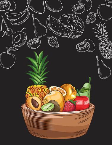 hand drawn fruits vector
