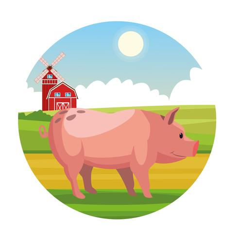 Farm rural animal cartoons vector