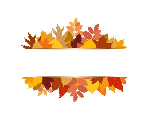 Vector illustration of various colorful autumn leaves with banner on white background